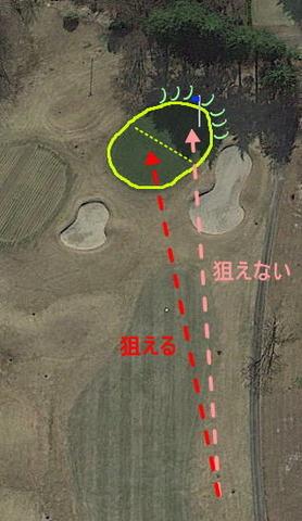 kisaichi_matu_08_green.jpg